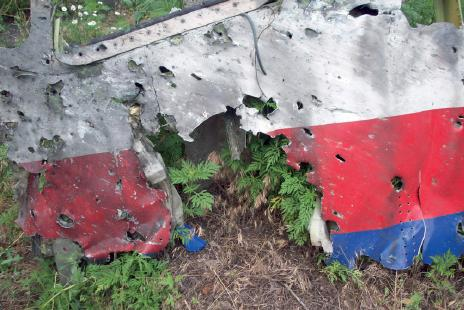 mh17_damage