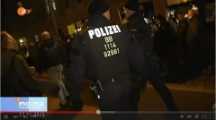 ZDF_AfD-Demo_Hilpert