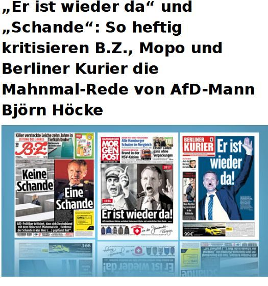 so_heftig_kritisieren_meedia528